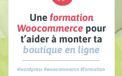 Une formation WooCommerce pour t'aider à monter ta boutique en ligne